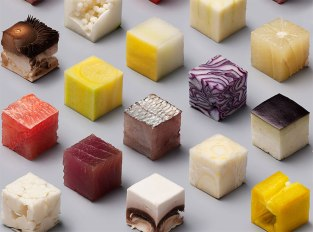 98-raw-food-cubes-lernert-sander-volkskrant-2