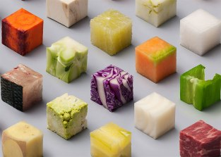 98-raw-food-cubes-lernert-sander-volkskrant-3