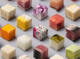 98-raw-food-cubes-lernert-sander-volkskrant-5